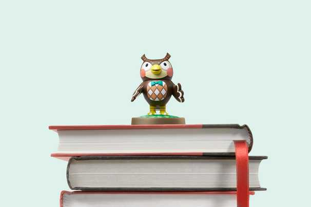 Inside academia's growing interest in 'Animal Crossing'