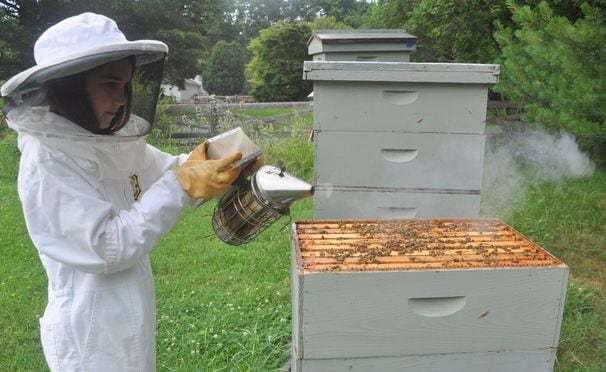 Kids are abuzz with activities to help save bees