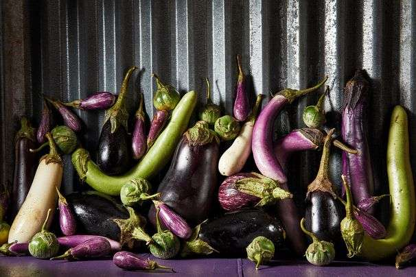 Eggplant can be a love-or-hate proposition. Here's how to treat it right.