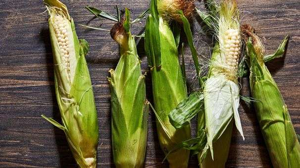 How to pick, store, clean and cook peak summer corn