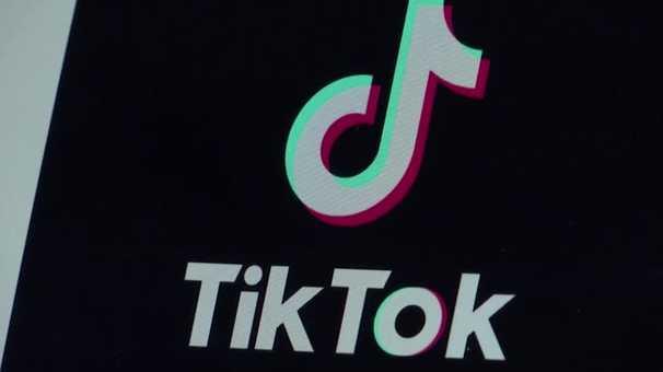 It's not just the United States: These governments see TikTok as a growing problem.