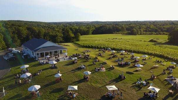 Reservations, contact tracing and social distance: What to expect at reopened wineries