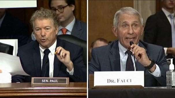 In latest clash over Wuhan lab, Fauci tells Sen. Rand Paul: 'You do not know what you're talking about'