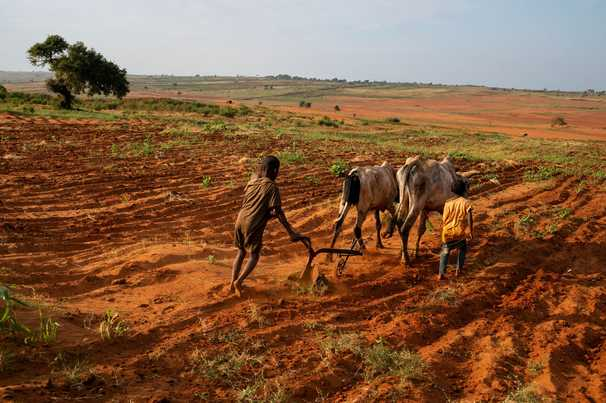 Madagascar is headed toward a climate change-linked famine it did not create