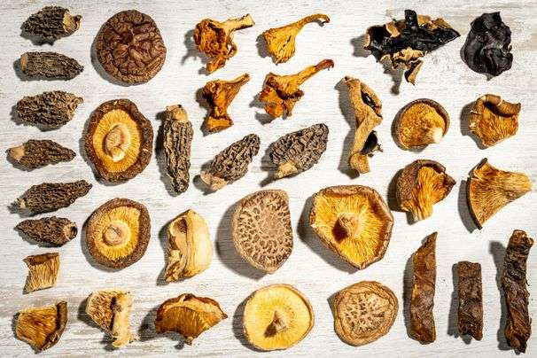 Dried mushrooms are an umami powerhouse. Here's how to use them.